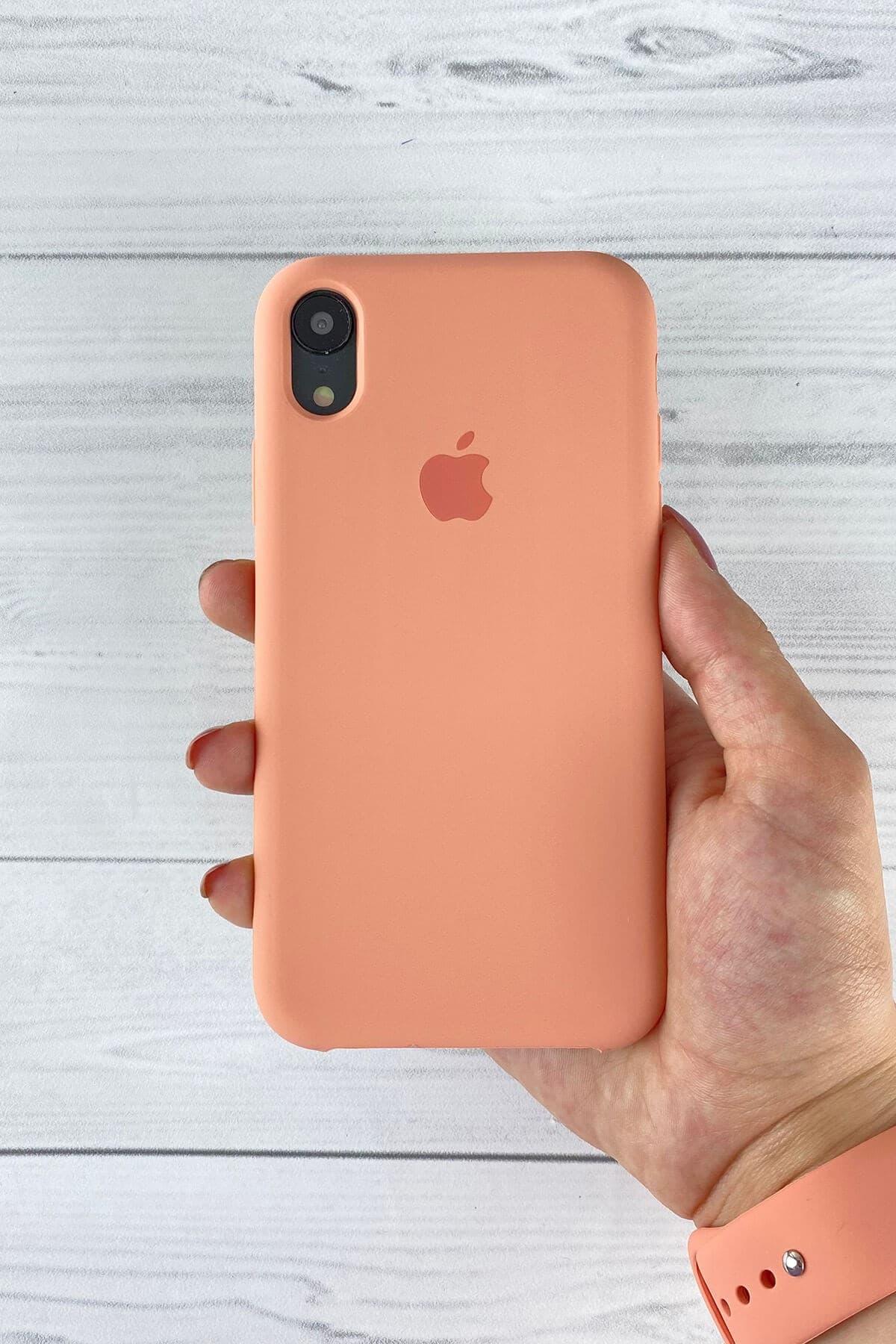 Iphone Flamingo Lansman Kılıf XR