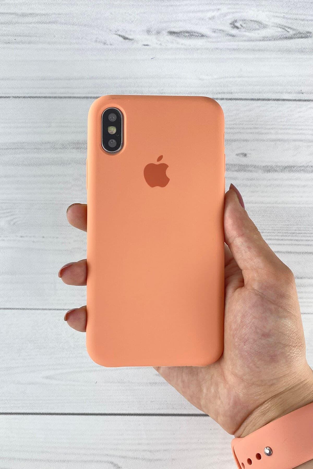 Iphone Flamingo Lansman Kılıf X/Xs